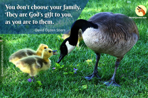 """You don't choose your family. They are God's gift to you, as you are to them."" – Family Quote"