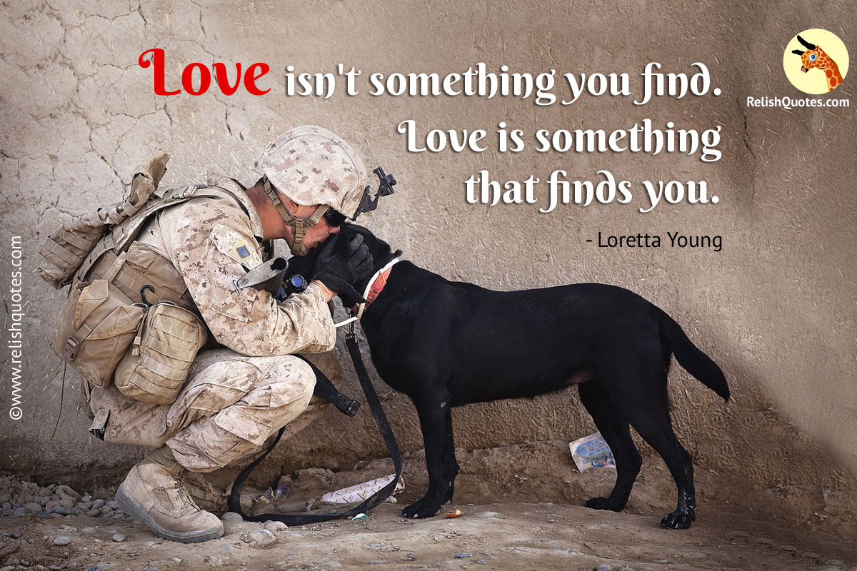 Dog Love Quotes Love Isn't Something You Findlove Is Something That Finds You