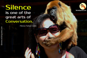 Silence is one of the great arts of conversation.