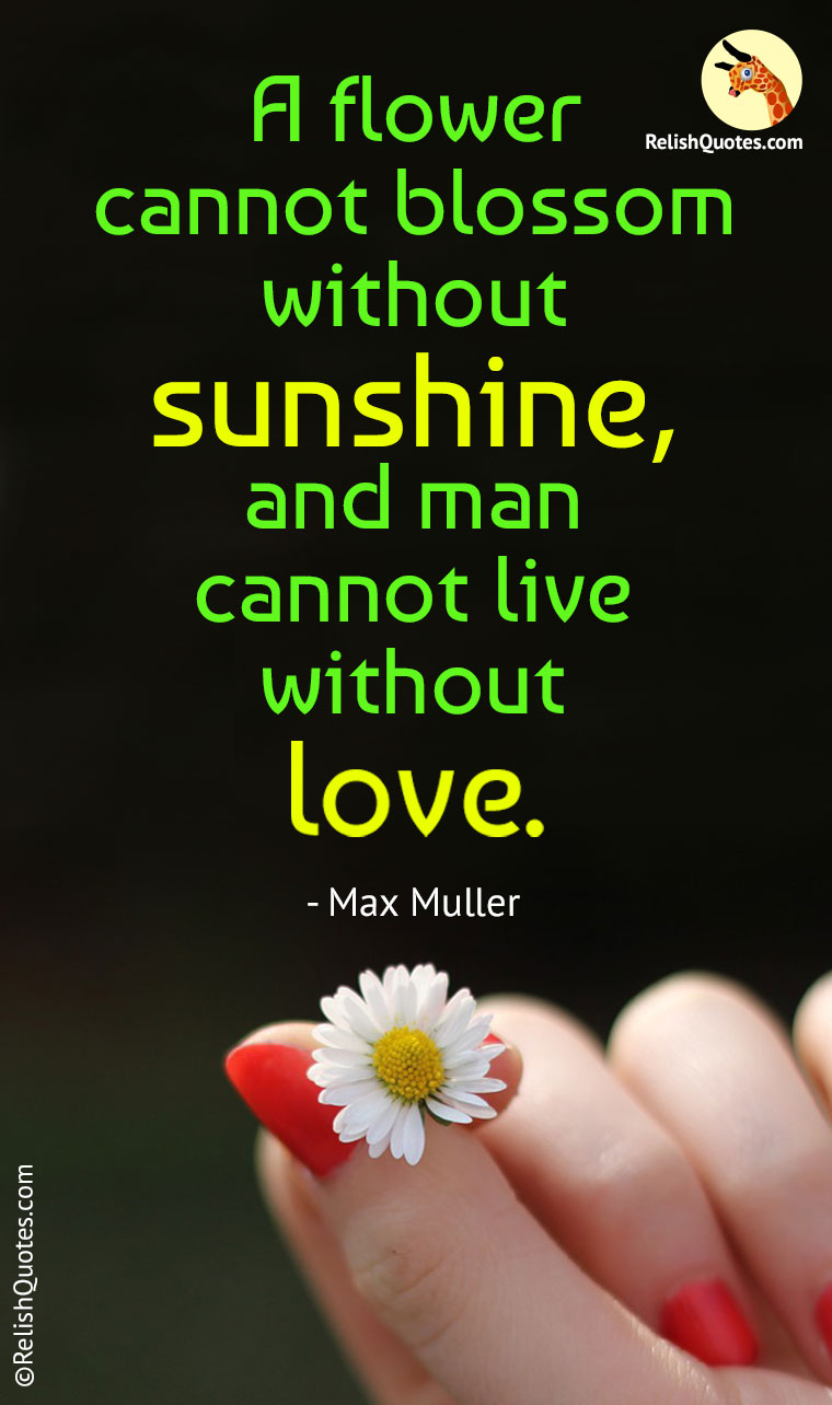 """A flower cannot blossom without Sunshine, and man cannot live without Love."""