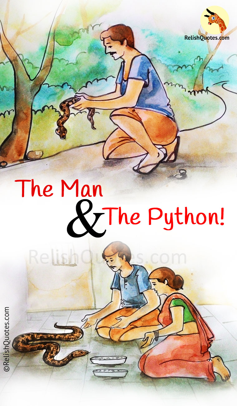 Interesting Short Story – The Man and The Python…