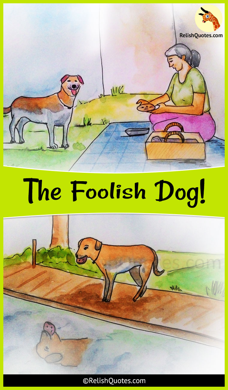 Short Story – The Foolish Dog!